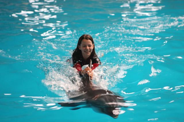 İstanbul Dolphinarium