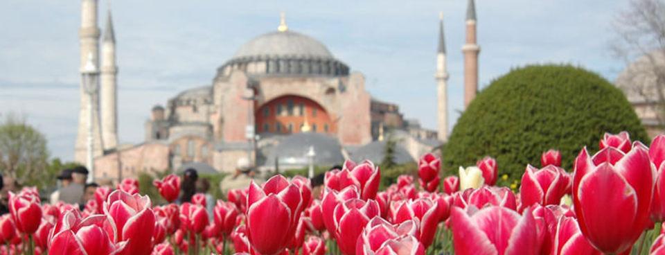 Festival de Tulipes istanbul